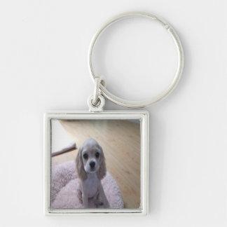 Cute Cocker Spaniel Puppy Silver-Colored Square Keychain