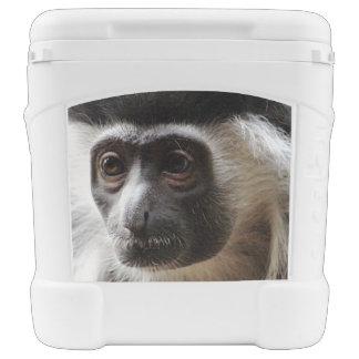 Cute Colobus Monkey Igloo Roller Cooler