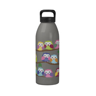 Cute Colorful Owl on Branch Water Bottle