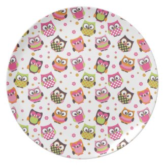 Cute Colorful Owls White plate plate