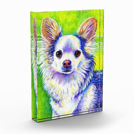 Cute Colorful White Longhaired Chihuahua Dog Block