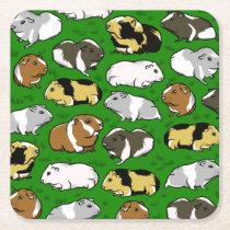 Cute colourful guinea pigs square paper coaster