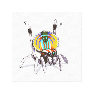Cute Colourful Peacock Spider Drawing Art Canvas
