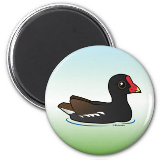Cute Common Gallinule 2 Inch Round Magnet