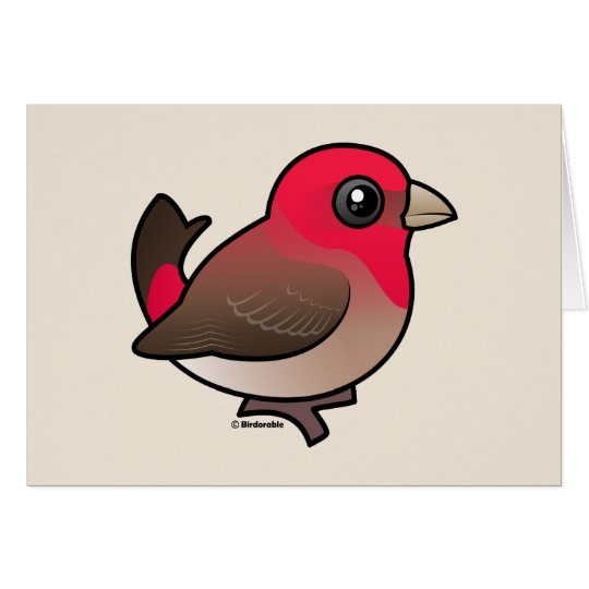 Cute Common Rosefinch Card