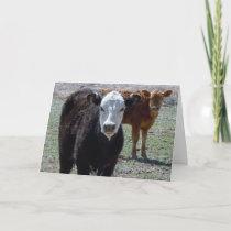 Cute Congratulations Vet Graduate - Ranch Farm DVM Card