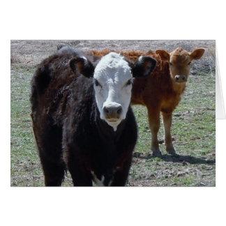 Cute Congratulations Vet Graduate - Ranch Farm DVM Greeting Card