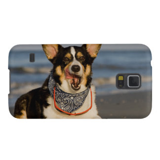 Cute Corgi Licking his Chops Galaxy S5 Cover