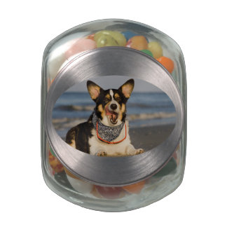 Cute Corgi Licking his Chops Glass Candy Jar