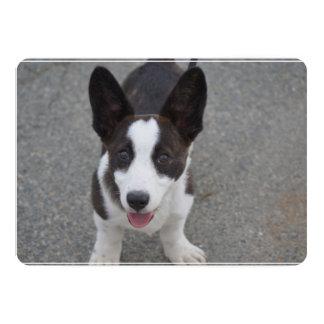 Cute Corgi Puppy Card