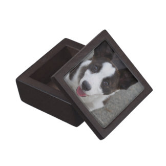Cute Corgi Puppy Keepsake Box