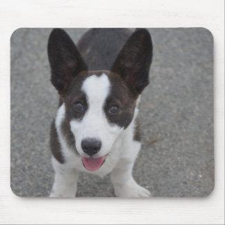 Cute Corgi Puppy Mouse Pad