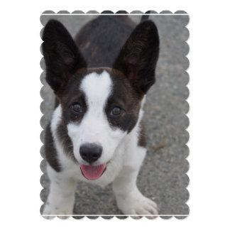 Cute Corgi Puppyh Card