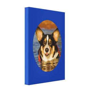 Cute Corgi with Blue Background Canvas Print