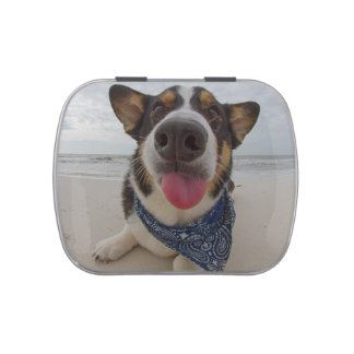 Cute Corgi with Tongue Out Candy Tin