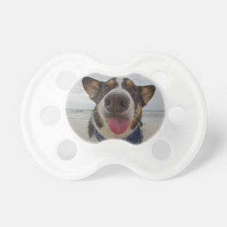 Cute Corgi with Tongue Out Pacifier