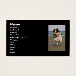 Cute Cori Running & Jumping on Beach Business Card