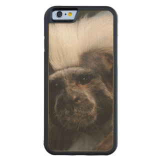Cute Cotton Topped Tamarin Carved® Maple iPhone 6 Bumper Case