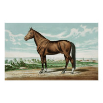 Cute Country vintage horse decor poster
