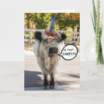 Cute Cow Birthday Card