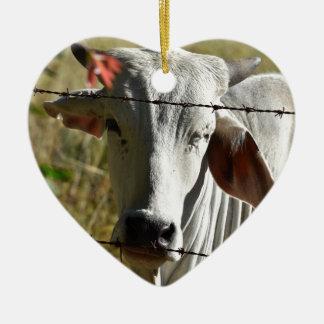 CUTE COW RURAL QUEENSLAND AUSTRALIA CERAMIC ORNAMENT