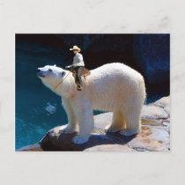 Cute Cowboy Postcard