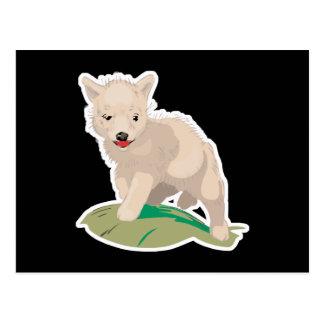 cute coyote pup postcard