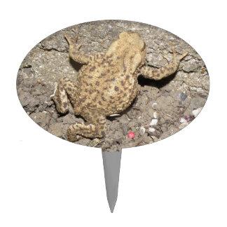 Cute Crawling Toad Cake Pick