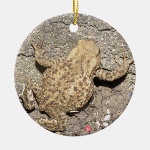 Cute Crawling Toad Custom Birthday Ornaments