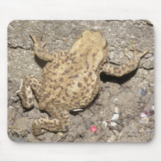 Cute Crawling Toad Mousepad