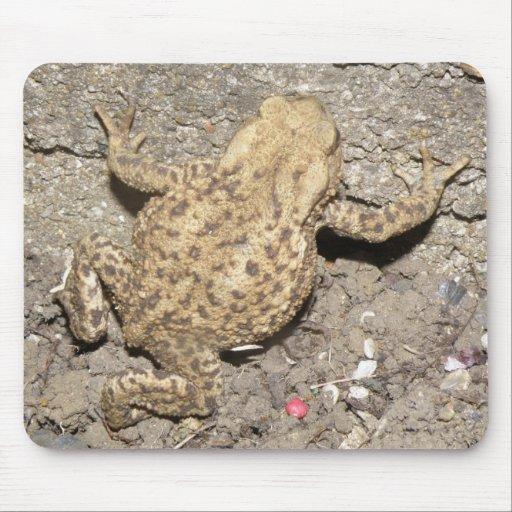 Cute Crawling Toad Mousepad