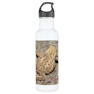Cute Crawling Toad 24oz Water Bottle