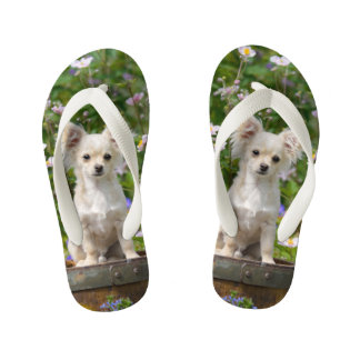 Cute cream Chihuahua Dog Puppy Pet Photo - Kids Kid's Flip Flops