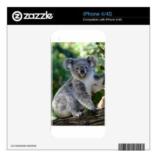 Cute cuddly Australian koala Decals For iPhone 4S