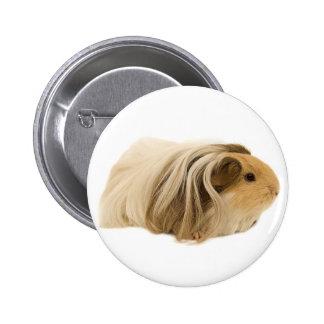 Cute Cuddly Cavy Pinback Button