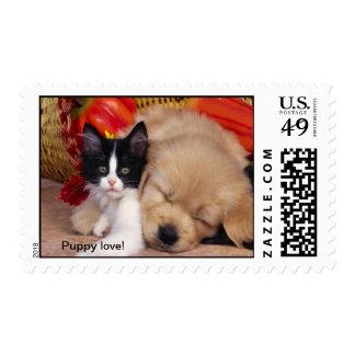 Cute cuddly puppy and kitten friends stamp
