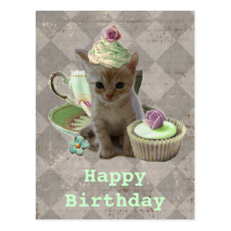 Cute Cupcat kitten birthday postcard