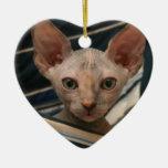 Cute curios sphynx kitten christmas ornament
