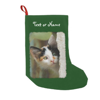Cute Curious Cat Kitten Photo - Personalized Santa Small Christmas Stocking