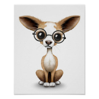 Cute Curious Chihuahua Wearing Eye Glasses White Poster