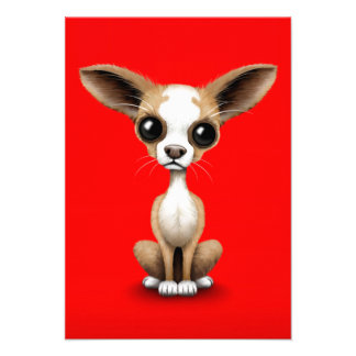 Cute Curious Chihuahua with Large Ears on Red Personalized Announcements