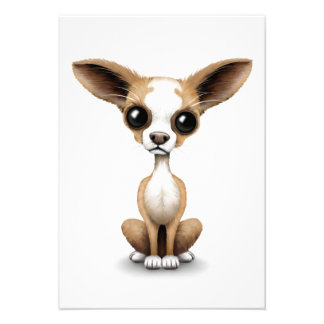 Cute Curious Chihuahua with Large Ears on White Personalized Invitations