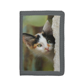 Cute Curious Kitten Prying Eyes, Purse Trifold Wallets