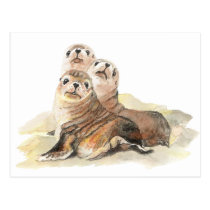 Cute Curious Seals, Watercolor Animals Postcard