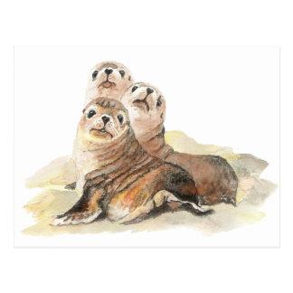 Cute Curious Seals, Watercolor Animals Postcard