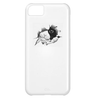 Cute curious sneaky cat kitten kawaii cute graphic case for iPhone 5C