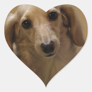 Cute dachschund dog heart sticker