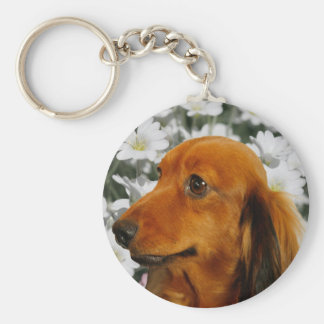 Cute Dachshund (Brown Long Haired) in Flowers Basic Round Button Keychain