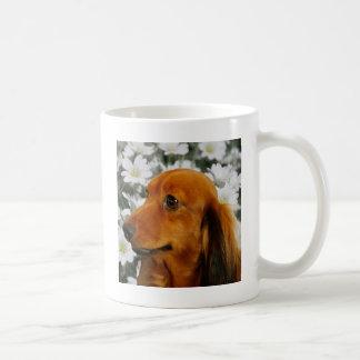 Cute Dachshund (Brown Long Haired) in Flowers Classic White Coffee Mug