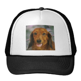 Cute Dachshund (Brown Long Haired) Wild Flowers Hat